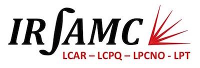 logo_Irsamc_small.jpg